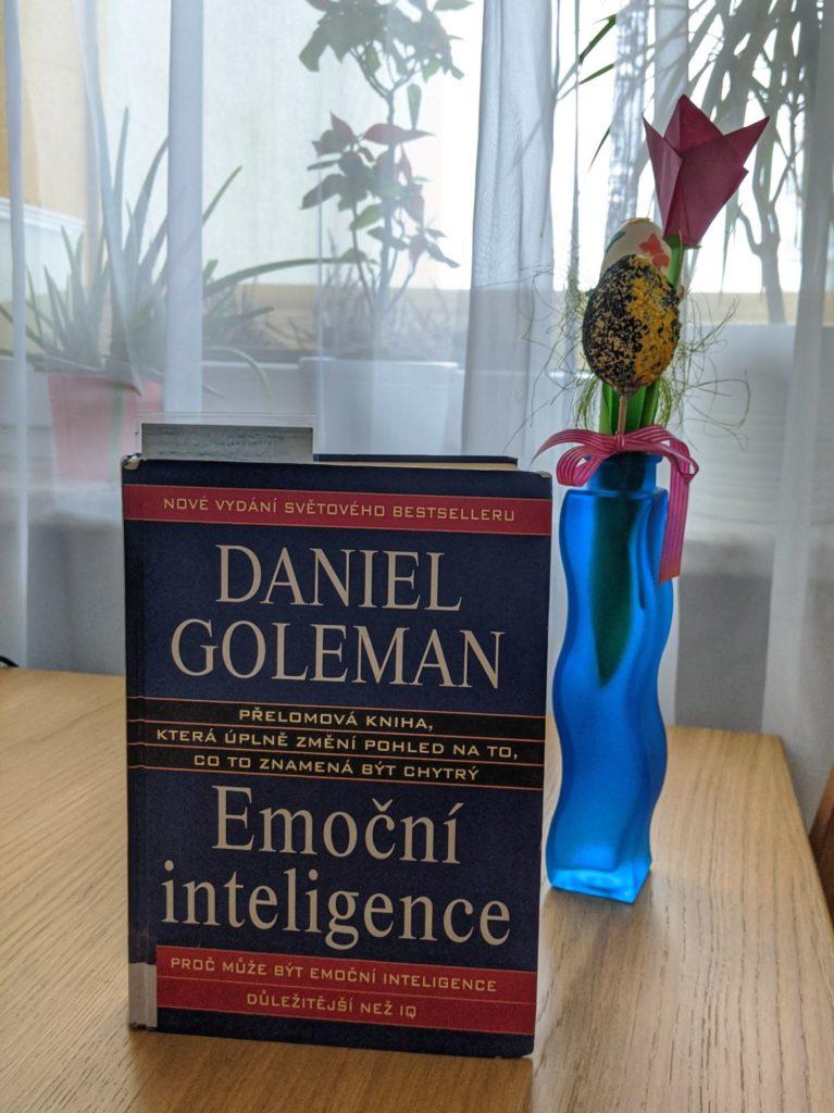 Emoční inteligence, Daniel Goleman